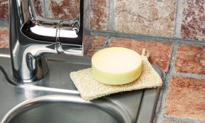 Nachhaltiges Spülmittes und biologisch abbaubarer Spülschwamm