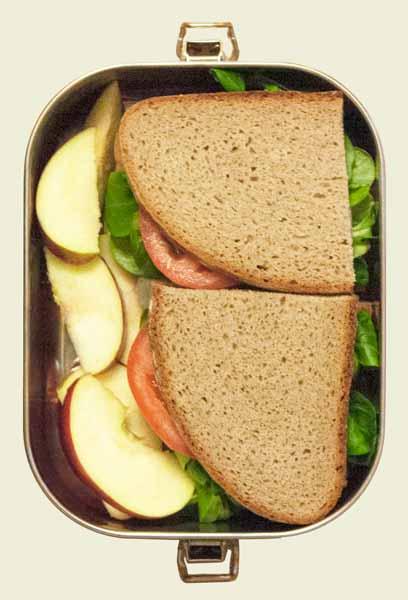 Die BentoBox zum Größenvergleich gefüllt mit Broten und Äpfeln