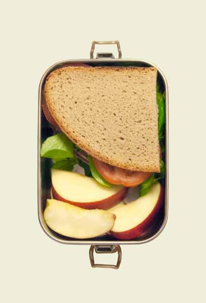 Die Brotdose zum Größenvergleich gefüllt mit Broten und Äpfeln